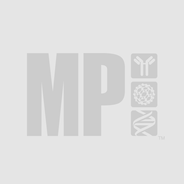 fast-dna-96-fungal-bacterial-kit-2.jpg.JPG